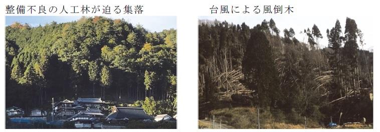f:id:chinoki1:20210104135944j:plain