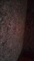金銀糸の壁