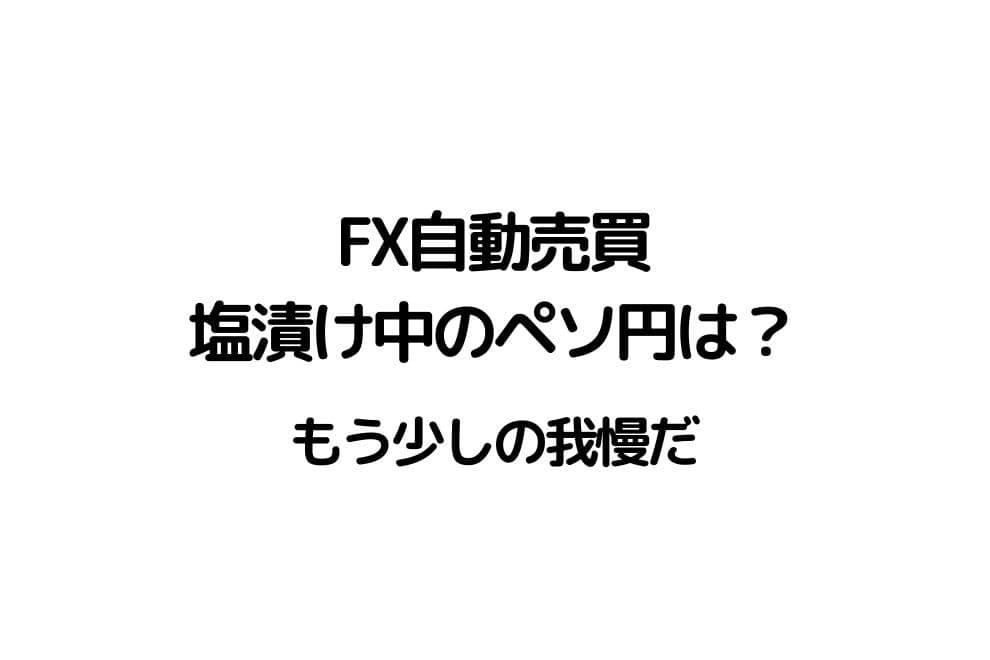 f:id:chip39:20201208131054j:plain
