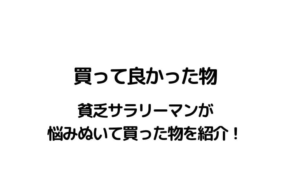 f:id:chip39:20201230121251j:plain
