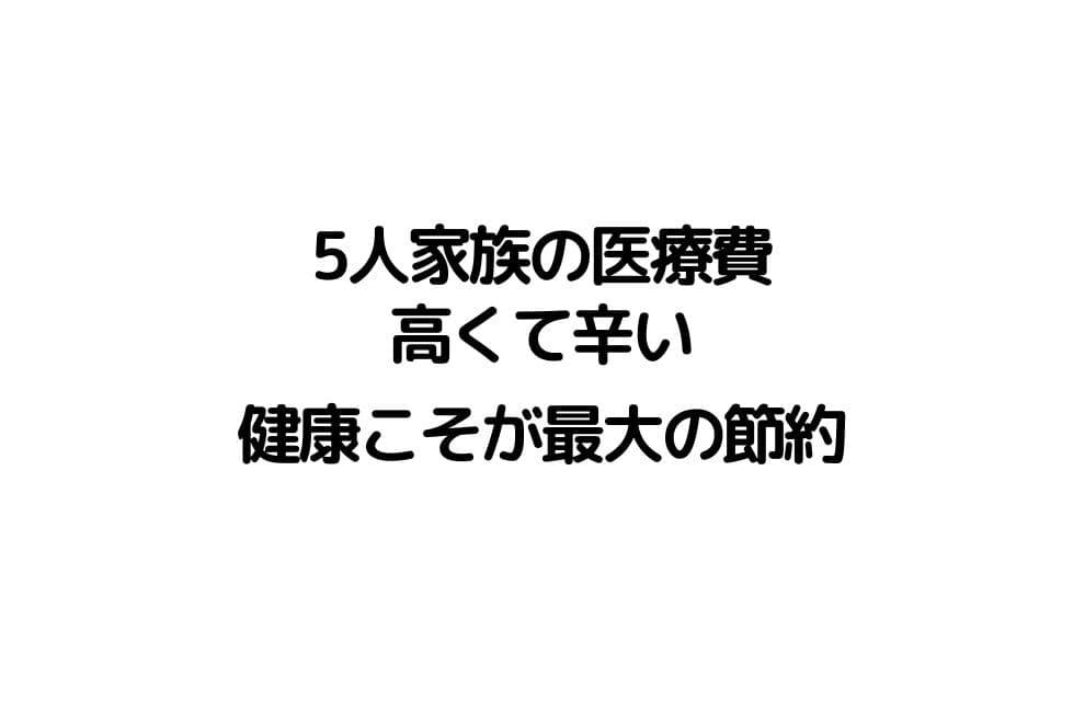 f:id:chip39:20210213195105j:plain