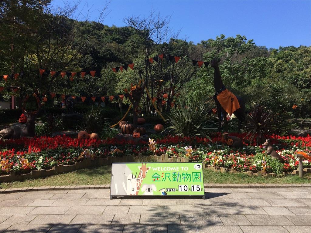 金沢動物園 広場