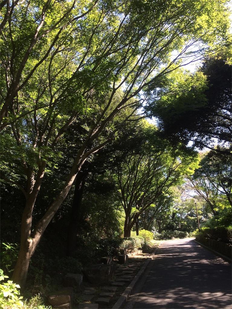 金沢動物園 園内風景