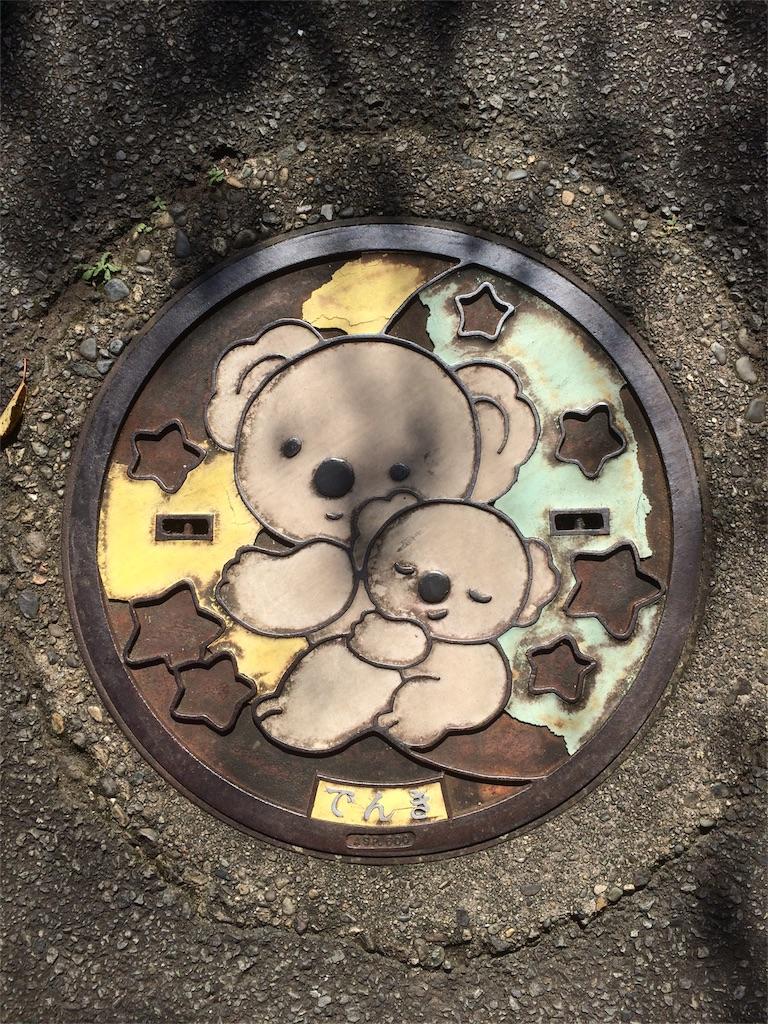 金沢動物園 コアラのマンホール