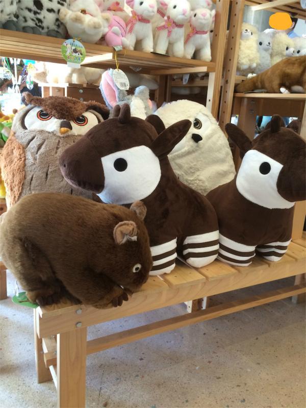 金沢動物園 オカピとウォンバットのぬいぐるみ