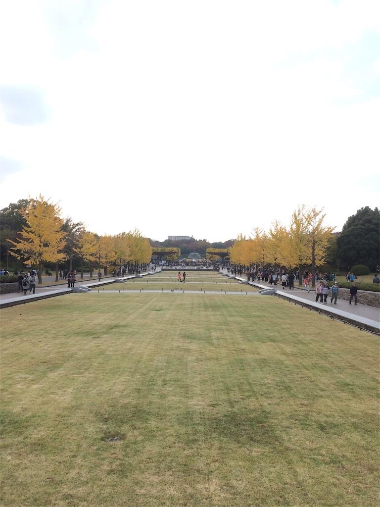 昭和記念公園 イチョウ 並木道