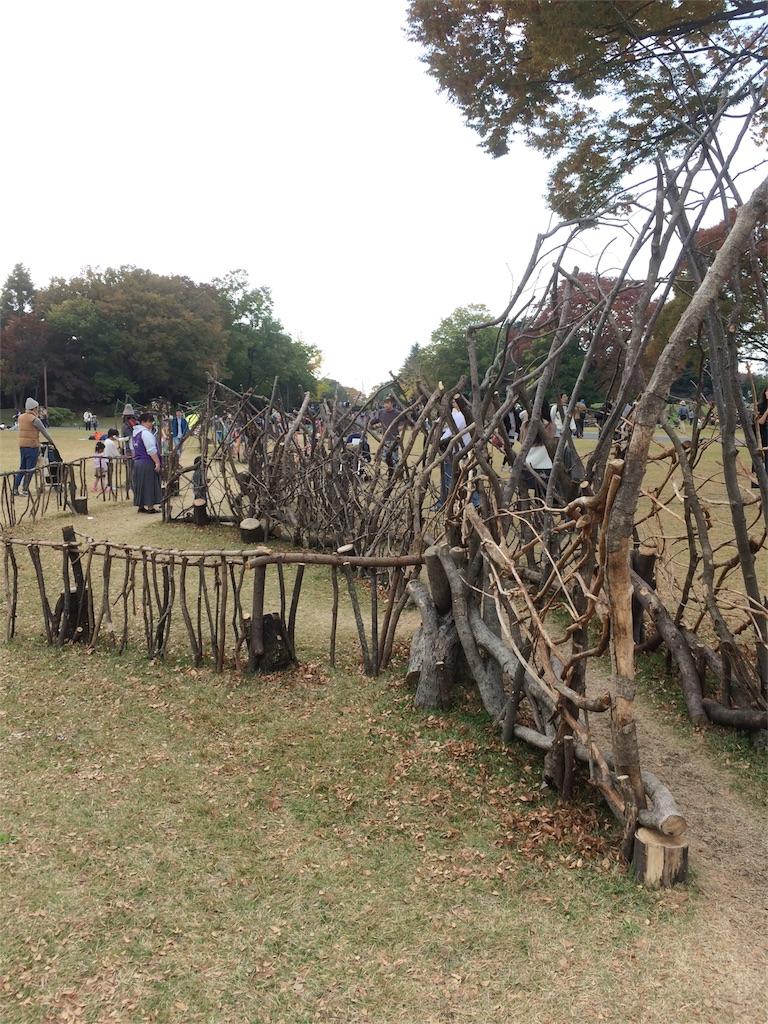 昭和記念公園 木の遊び場