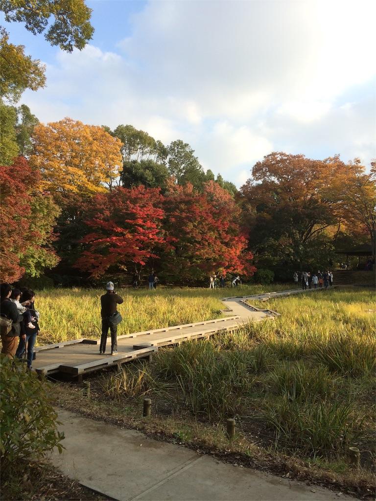 昭和記念公園 橋