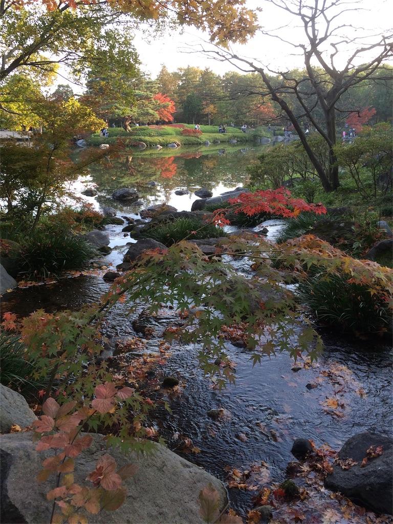 昭和記念公園 水辺2