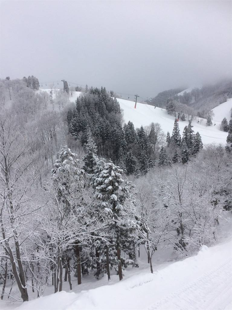 GALA湯沢 樹氷
