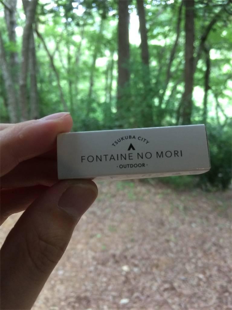 夏キャンプ フォンテーヌの森 マッチ