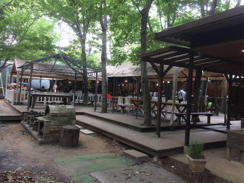 夏キャンプ フォンテーヌの森 多目的広場