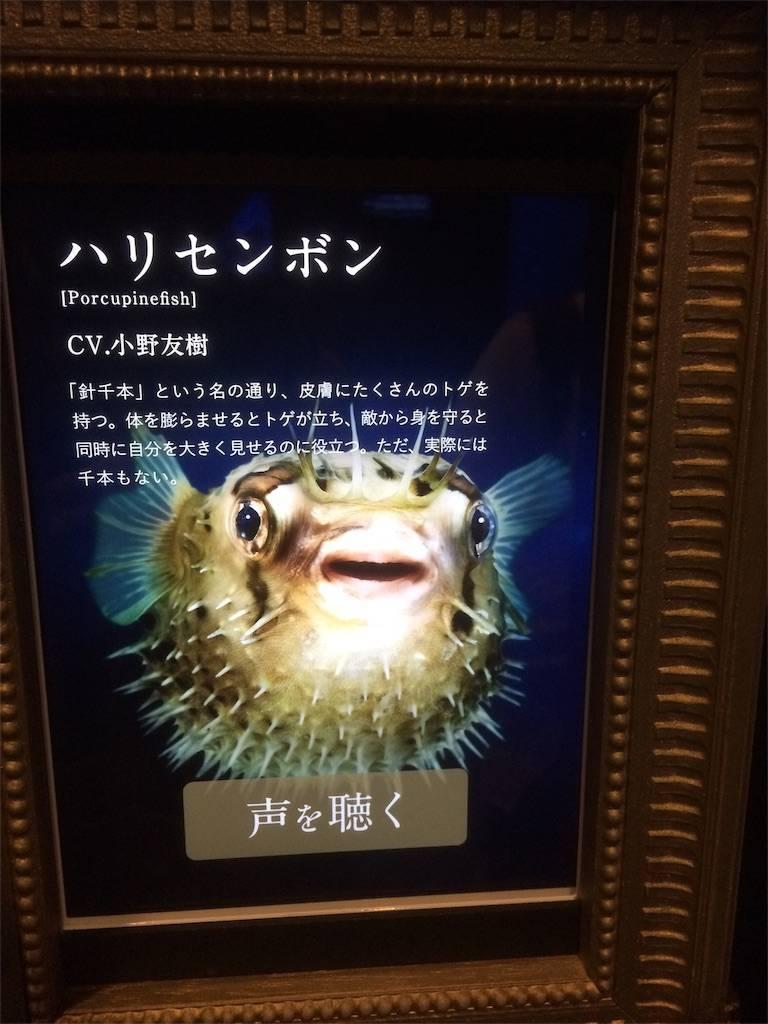 アクアパーク品川 水族館 イケ魚 声優