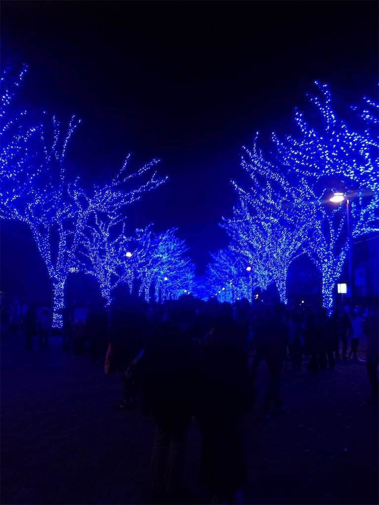 青の洞窟 代々木公園 イルミネーション ライトアップ3