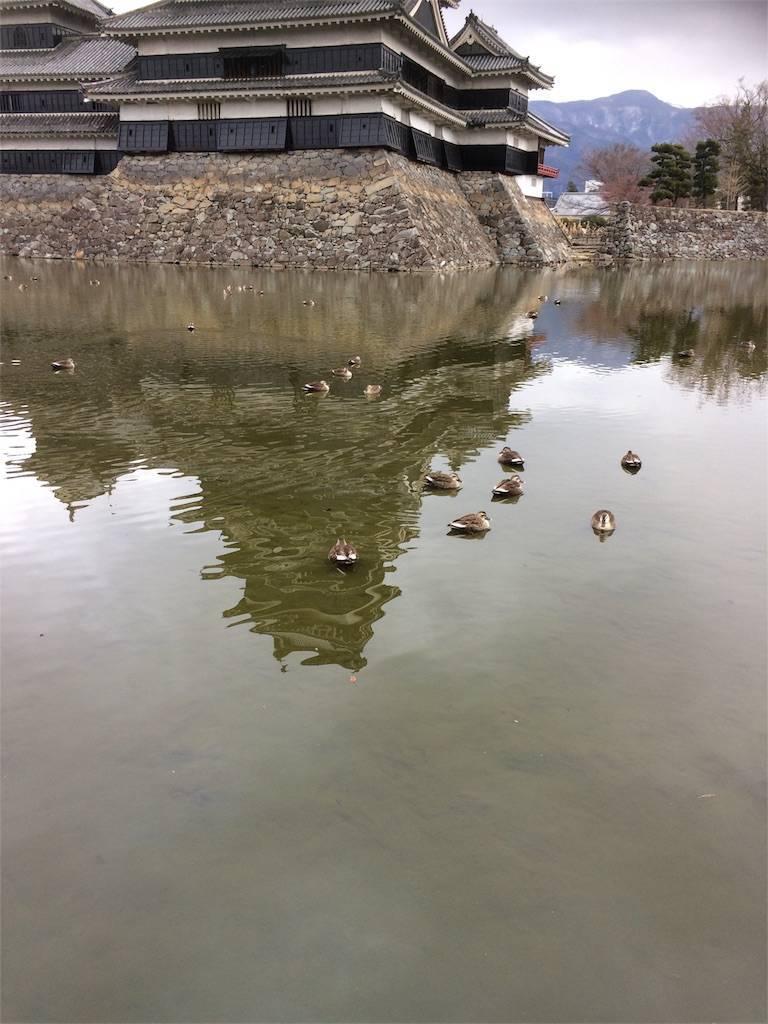 長野旅行 松本城 内堀