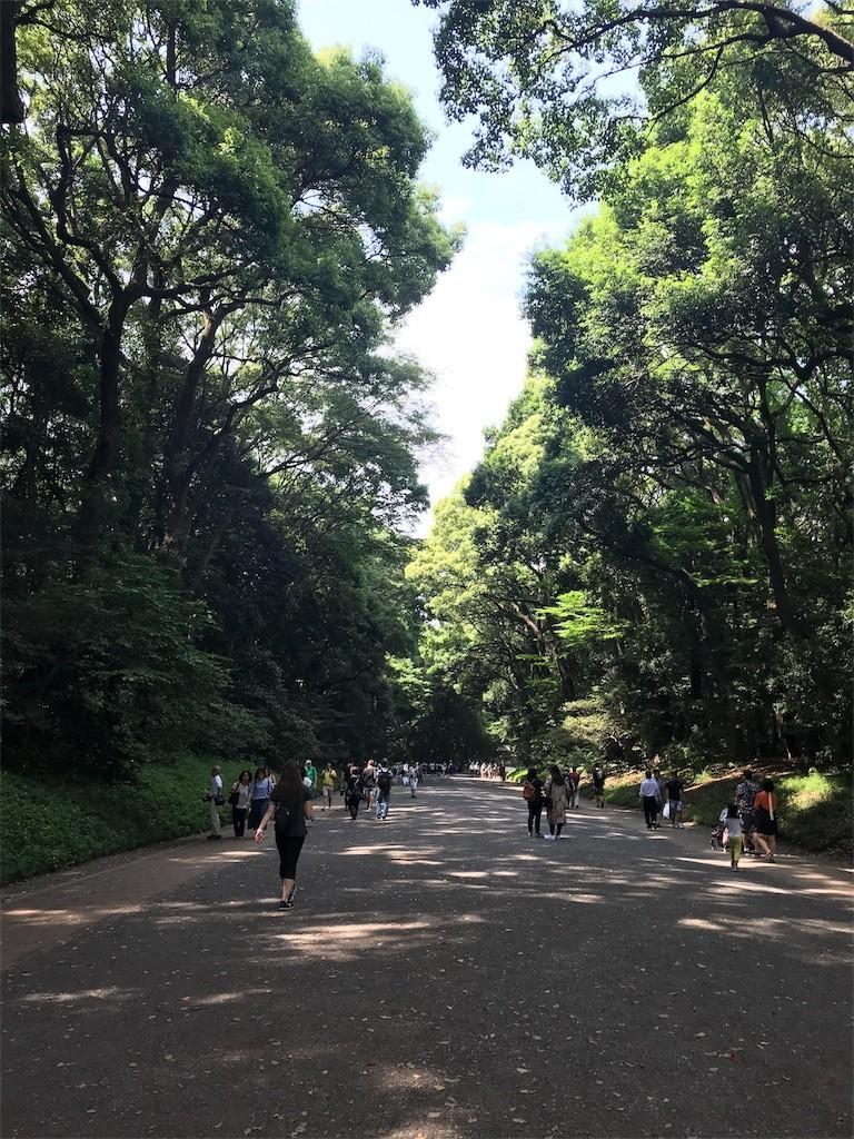 f:id:chiriquunobu:20180613214033j:image