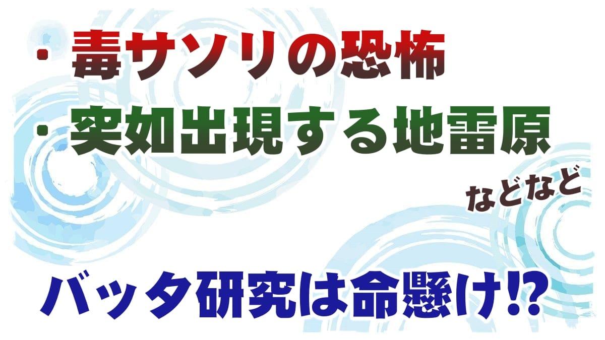 f:id:chitose0723:20210807180216j:plain