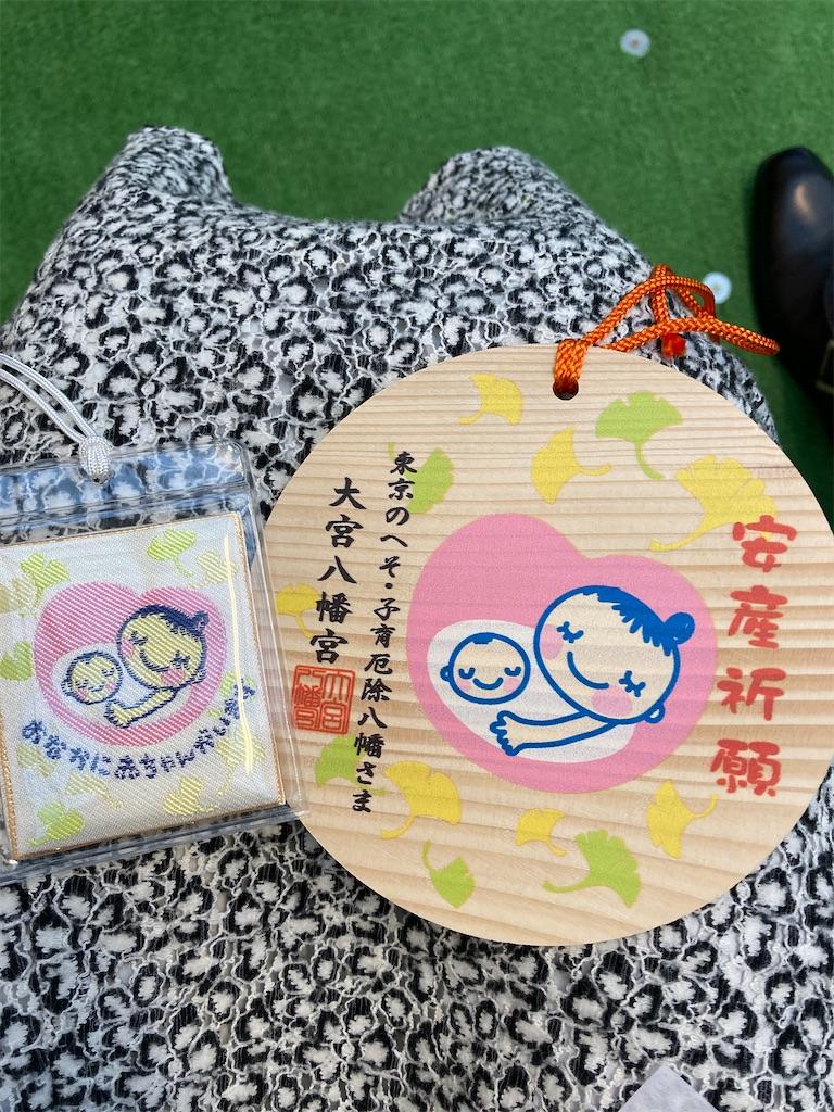 f:id:chiwawatokoara:20210504092429j:image