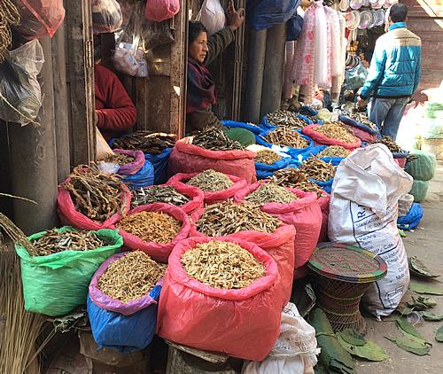 ネパールは乾物の宝庫!? @ カトマンズ