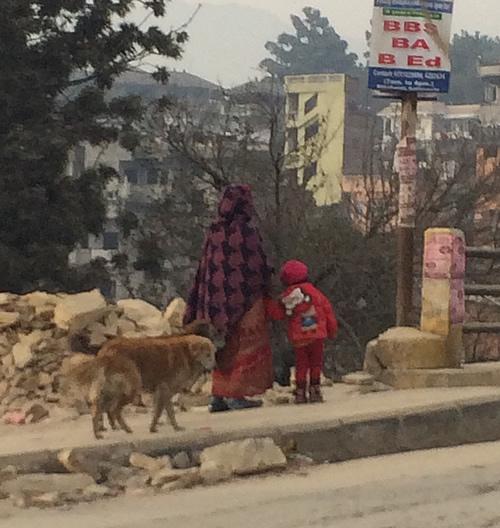 ネパールの幸せな犬たち @ カトマンズ