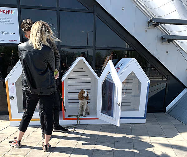 ダニロフスキー市場は犬連れに優しい??