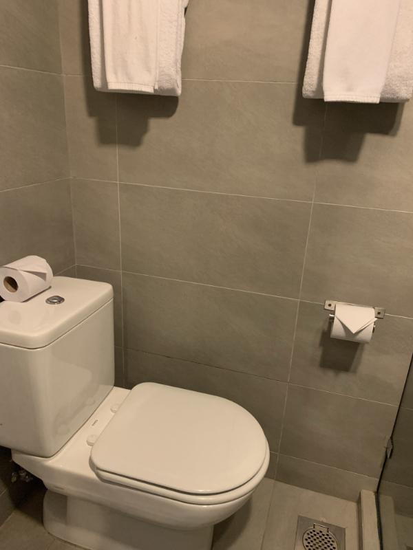 立地抜群のホテル The Brunei Hotel トイレ