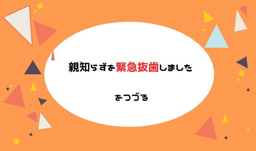 f:id:chiyo_chiyo:20181228154556j:plain