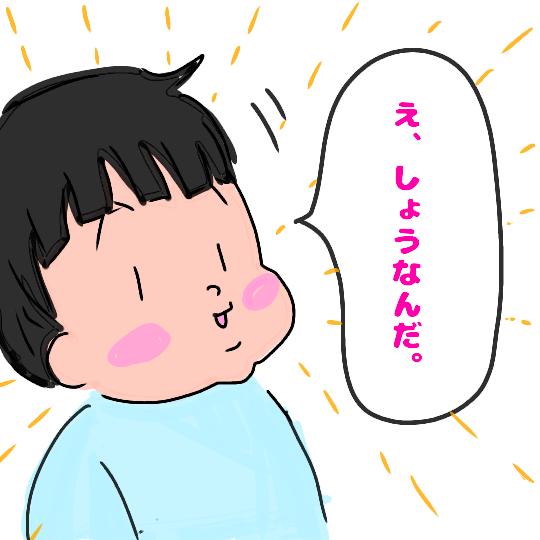 f:id:chiyohapi:20190226155602p:plain