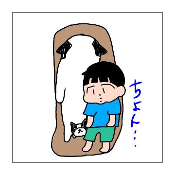 f:id:chiyohapi:20190521052550p:plain
