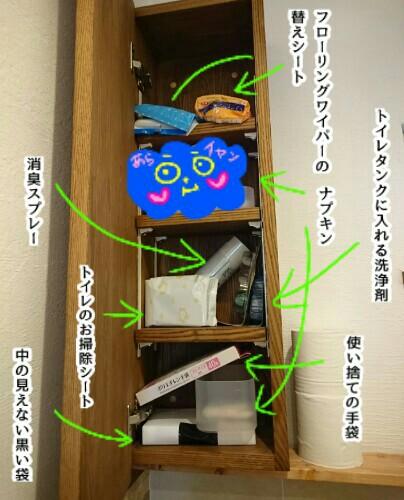 f:id:chiyohapi:20190711162757j:plain