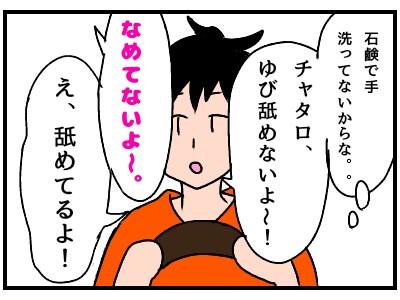 f:id:chiyohapi:20190831072116j:image