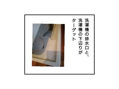f:id:chiyohapi:20200209072301j:image