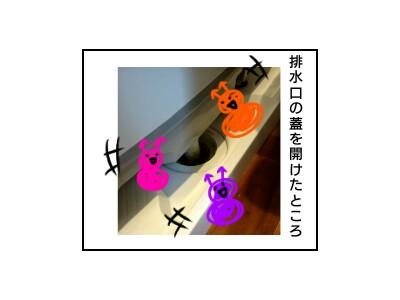 f:id:chiyohapi:20200209072316j:image