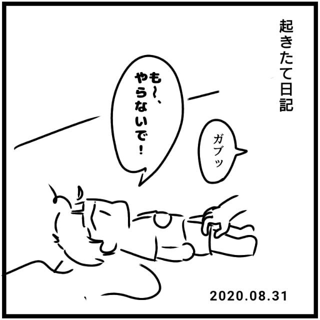 f:id:chiyohapi:20201116060306j:image