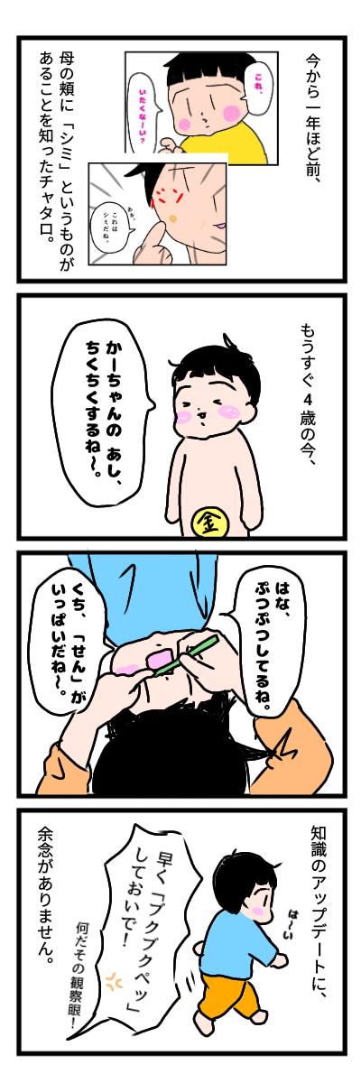 f:id:chiyohapi:20201215055605p:plain