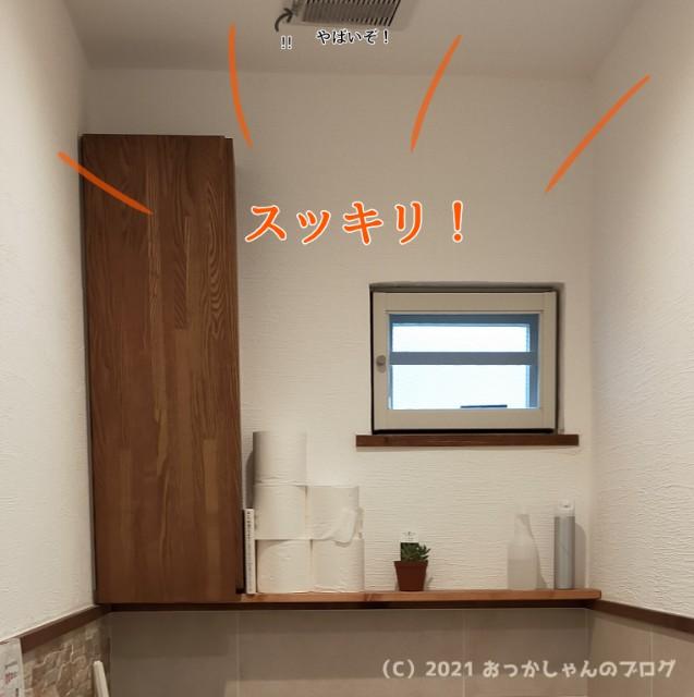 f:id:chiyohapi:20210302124445j:image