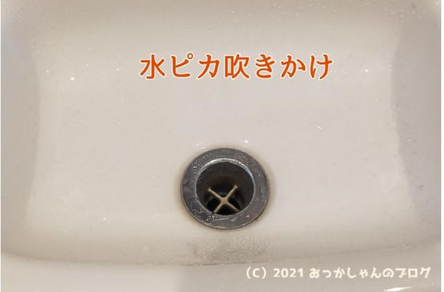 f:id:chiyohapi:20210303102236j:image