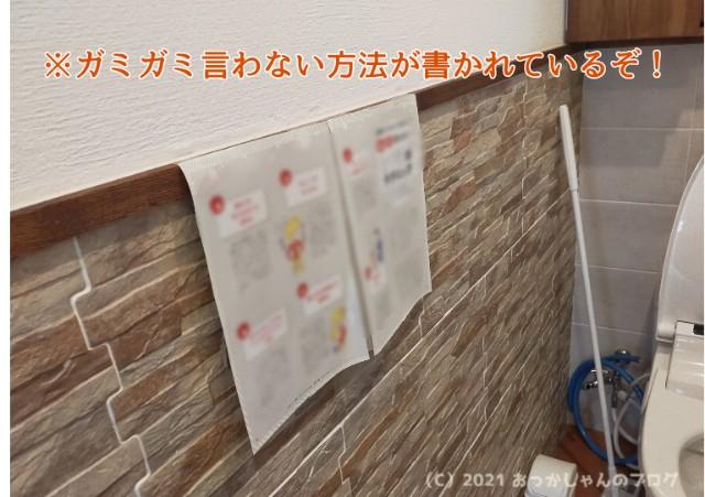 f:id:chiyohapi:20210303102256j:image