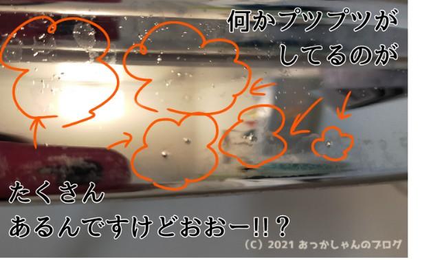f:id:chiyohapi:20210309135357j:image