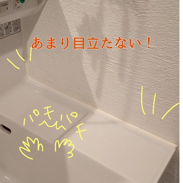 f:id:chiyohapi:20210314060236j:image