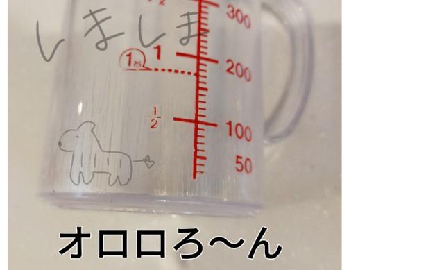 f:id:chiyohapi:20210329111149j:image