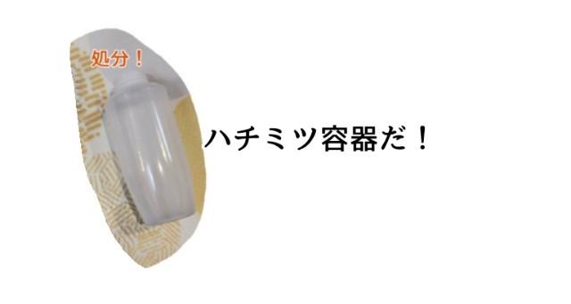 f:id:chiyohapi:20210413083020j:image