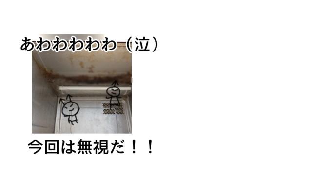 f:id:chiyohapi:20210427104652j:image
