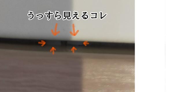 f:id:chiyohapi:20210429065727j:image