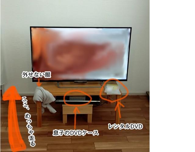 f:id:chiyohapi:20210507103909j:image