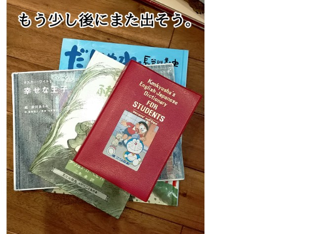 f:id:chiyohapi:20210508052810j:image