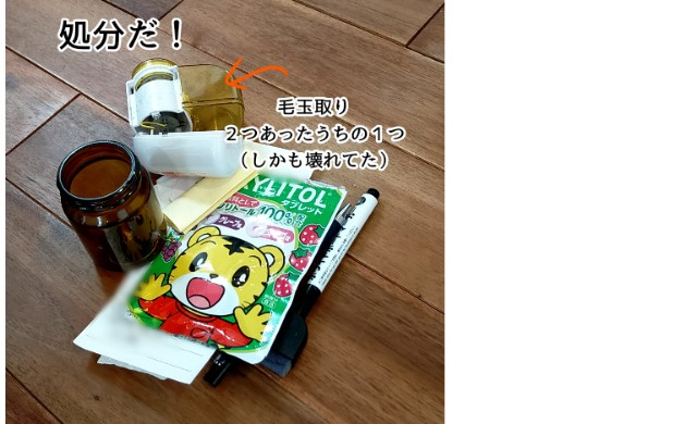 f:id:chiyohapi:20210517112627j:image