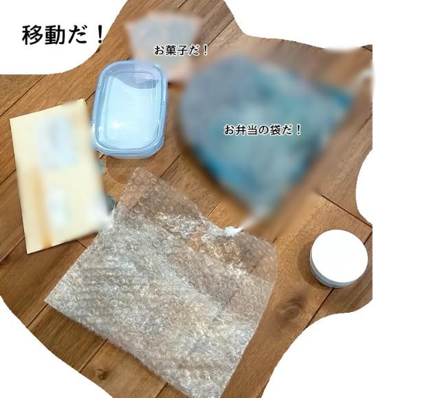 f:id:chiyohapi:20210521102432j:image