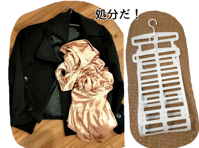 f:id:chiyohapi:20210526111236j:image