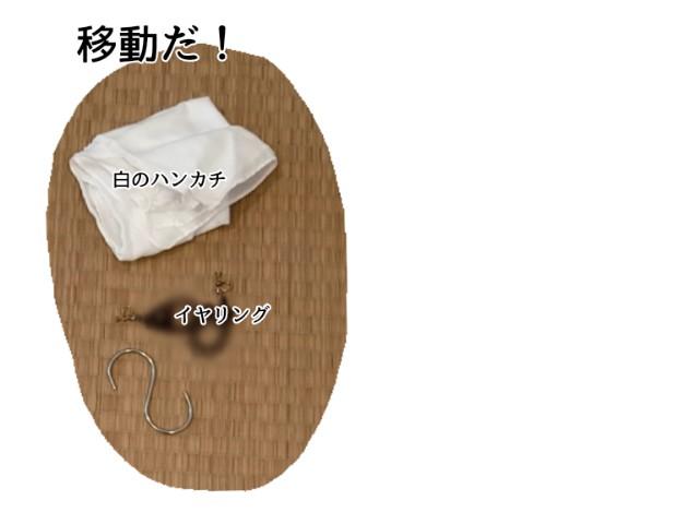 f:id:chiyohapi:20210526111300j:image